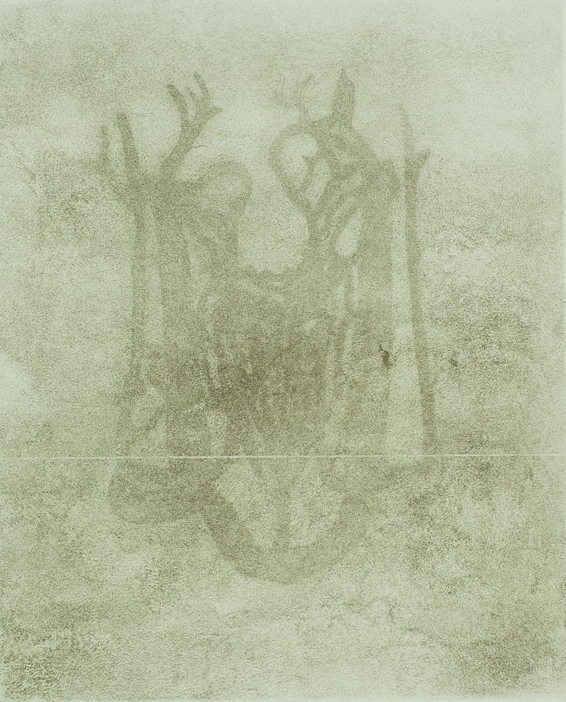 disegni di cenere